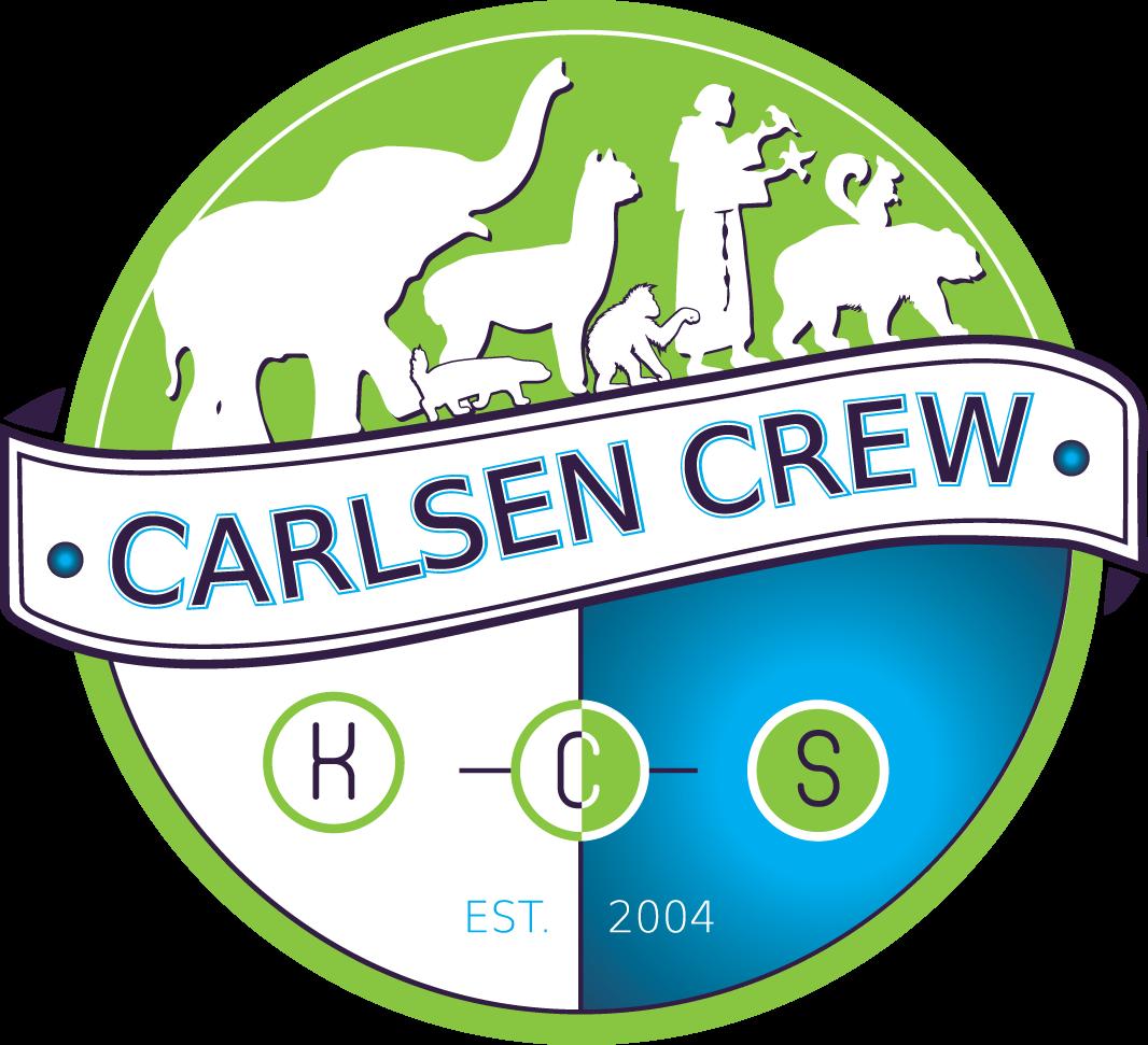 The Carlsen Crew